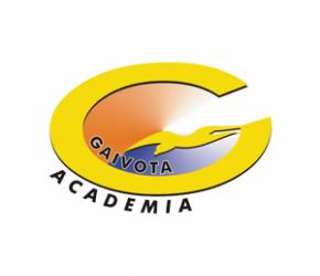 logo-academia-gaivota-3361035789
